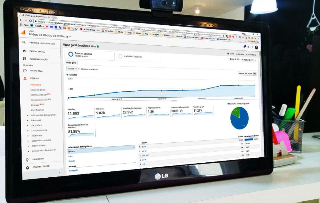 Foto do Google Analytics mostrando os resultados de SEO para loja virtual